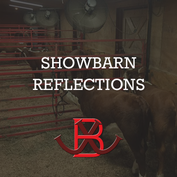 Showbarn Refelections
